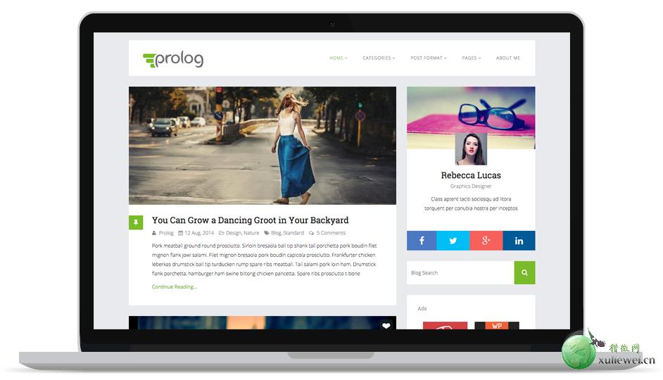 WordPress多色版博客主题:Prolog