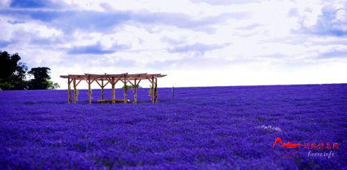 mjd1 世界上最色的十大美景地