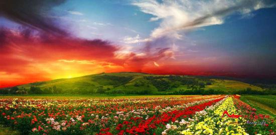mjd8 世界上最色的十大美景地