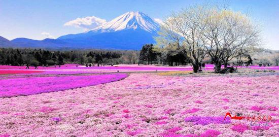 mjd9 世界上最色的十大美景地