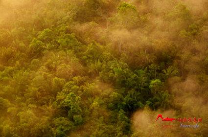 rdyl4 世界上最美的十大热带雨林