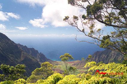 rdyl6 世界上最美的十大热带雨林