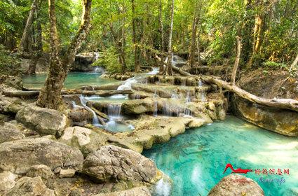 rdyl9 世界上最美的十大热带雨林